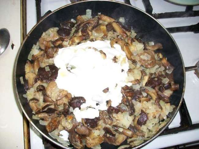протушить грибы со сметаной