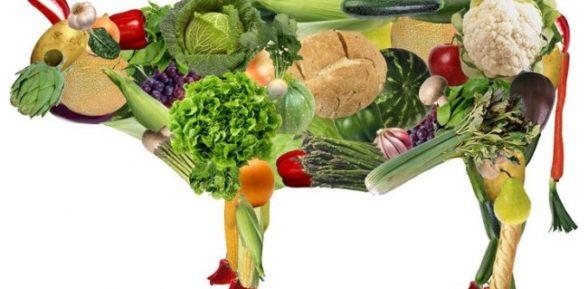 Вегетарианство и правильное здоровое питание