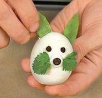 вариант 1 зайца