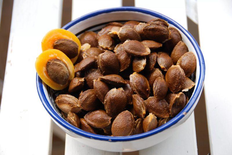 Вред абрикосовых косточек