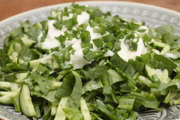 салат из щавля и огурцов