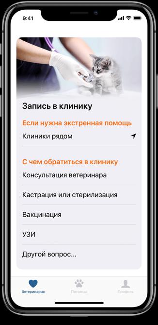 слайд из приложения
