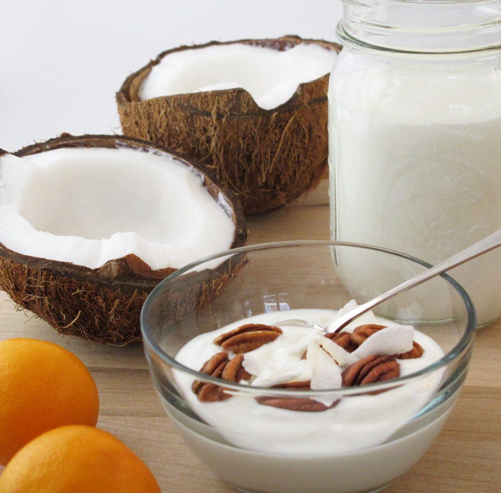 Простой рецепт йогурта из кокосового молока